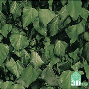Giấy dán tường Annie 7928-1, Mẫu giấy dán tường lá cây, giấy dán tường thiên nhiên xanh