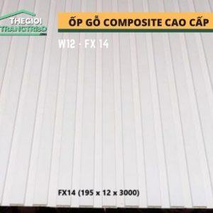 Ốp tường gỗ composite cao cấp - lamri nhựa gỗ GPWood W12 FX14